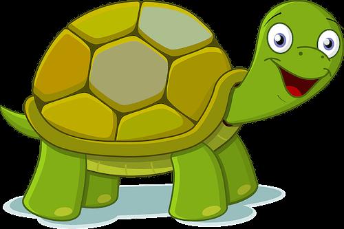 schildkröten Namen männlich und weiblich